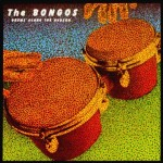 THE BONGOS