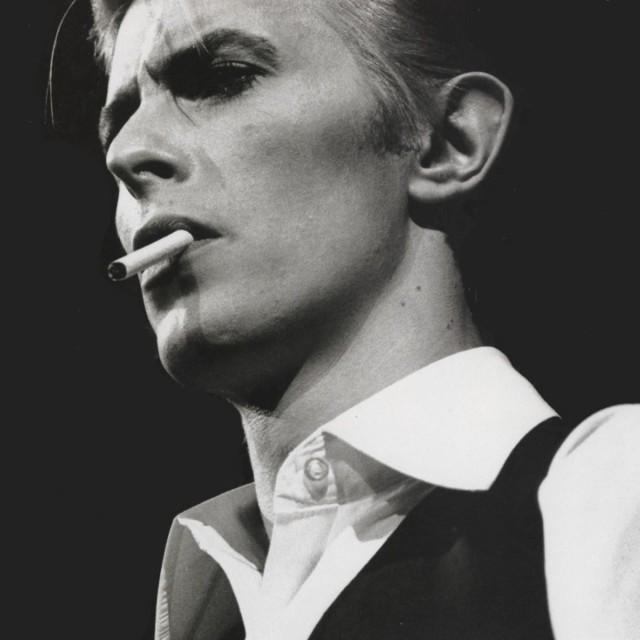 Singular. Bowie.